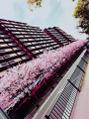 桜並木・x・